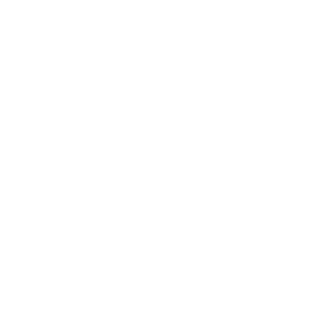 The logo of B&M in white